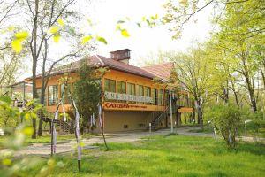 restoran-smorodina-ochen-horosho-no-ne-bez-voprosov